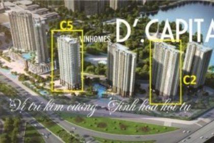 Tòa C5 D'. Capitale